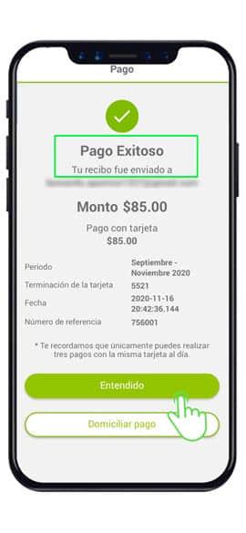 cuanto pagare de luz app-cfe-contigo-mexico
